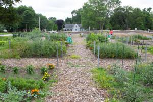 Blue Springs Community Garden